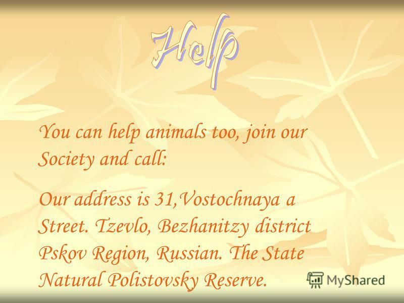 You can help animals too, join our Society and call: Our address is 31,Vostochnaya a Street. Tzevlo, Bezhanitzy district Pskov Region, Russian. The State Natural Polistovsky Reserve.
