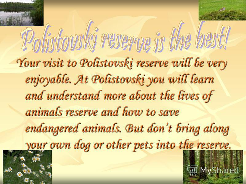 Your visit to Polistovski reserve will be very enjoyable. At Polistovski you will learn and understand more about the lives of animals reserve and how to save endangered animals. But dont bring along your own dog or other pets into the reserve.