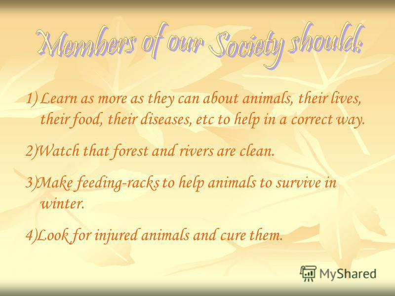 1)Learn as more as they can about animals, their lives, their food, their diseases, etc to help in a correct way. 2)Watch that forest and rivers are clean. 3)Make feeding-racks to help animals to survive in winter. 4)Look for injured animals and cure
