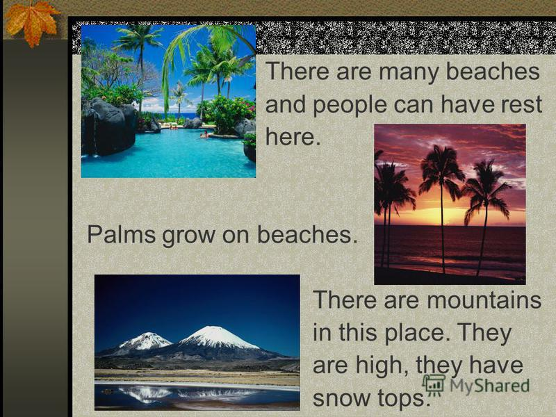There are many beaches and people can have rest here. Palms grow on beaches. There are mountains in this place. They are high, they have snow tops.
