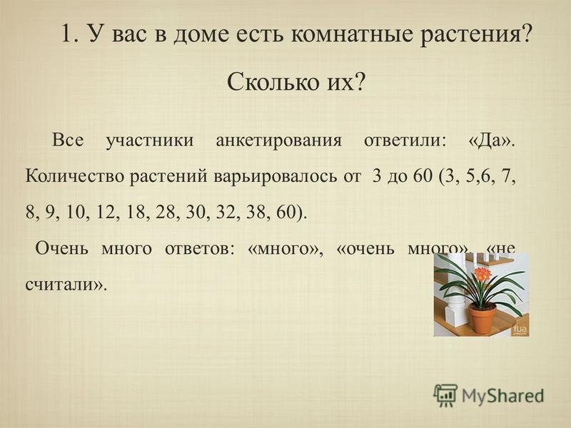 Все участники анкетирования ответили: «Да». Количество растений варьировалось от 3 до 60 (3, 5,6, 7, 8, 9, 10, 12, 18, 28, 30, 32, 38, 60). Очень много ответов: «много», «очень много», «не считали». 1. У вас в доме есть комнатные растения? Сколько их