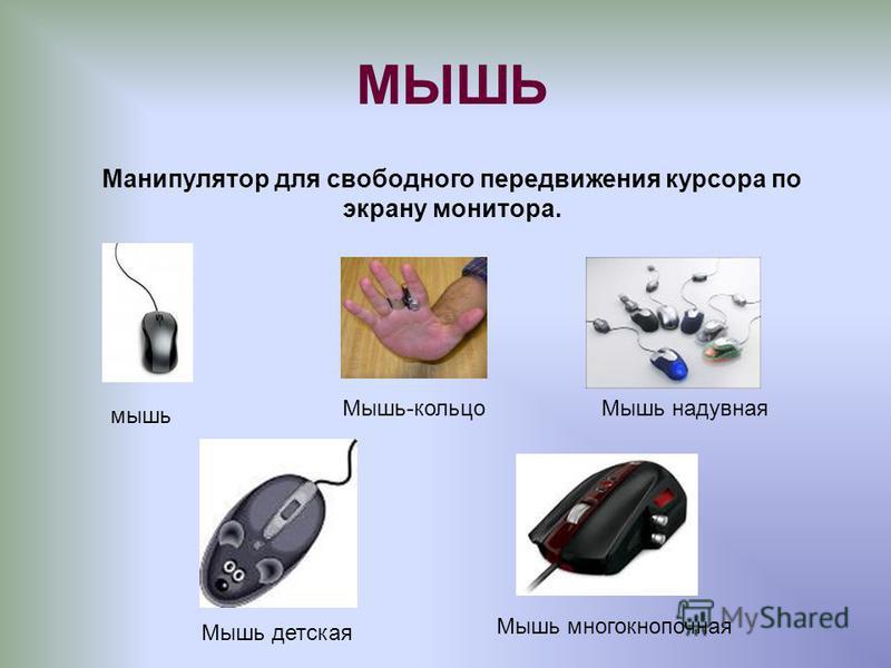 МЫШЬ Манипулятор для свободного передвижения курсора по экрану монитора. мышь Мышь-кольцо Мышь надувная Мышь детская Мышь многокнопочная