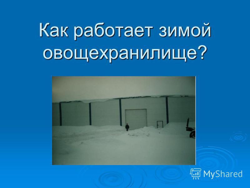 Как работает зимой овощехранилище?