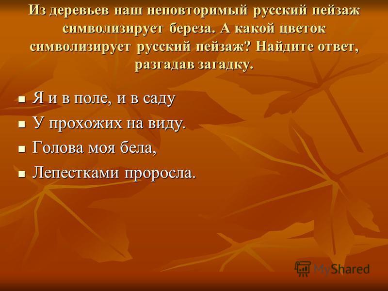 Из деревьев наш неповторимый русский пейзаж символизирует береза. А какой цветок символизирует русский пейзаж? Найдите ответ, разгадав загадку. Я и в поле, и в саду Я и в поле, и в саду У прохожих на виду. У прохожих на виду. Голова моя бела, Голова