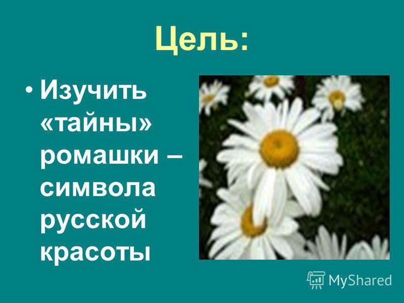 Цель: Изучить «тайны» ромашки – символа русской красоты