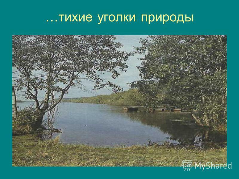 …тихие уголки природы