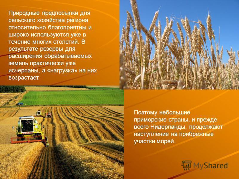 Природные предпосылки для сельского хозяйства региона относительно благоприятны и широко используются уже в течение многих столетий. В результате резервы для расширения обрабатываемых земель практически уже исчерпаны, а «нагрузка» на них возрастает.