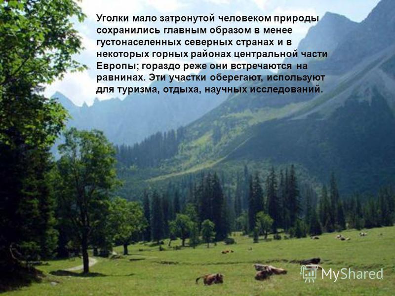 Уголки мало затронутой человеком природы сохранились главным образом в менее густонаселенных северных странах и в некоторых горных районах центральной части Европы; гораздо реже они встречаются на равнинах. Эти участки оберегают, используют для туриз