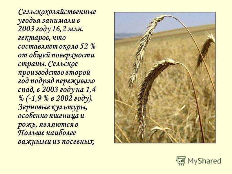 Сельскохозяйственные угодья занимали в 2003 году 16,2 млн. гектаров, что составляет около 52 % от общей поверхности страны. Сельское производство второй год подряд переживало спад, в 2003 году на 1,4 % (-1,9 % в 2002 году). Зерновые культуры, особенн