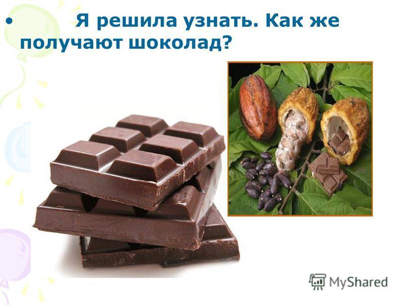 Я решила узнать. Как же получают шоколад?