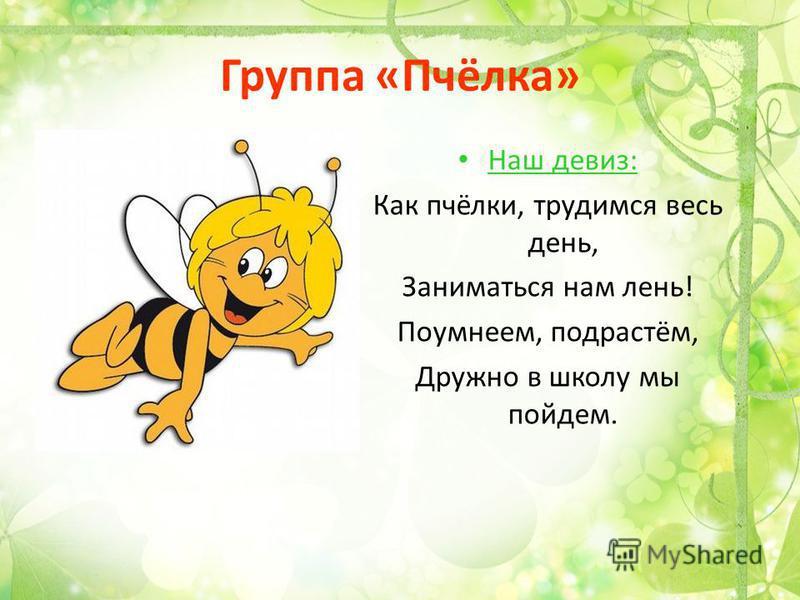 Группа «Пчёлка» Наш девиз: Как пчёлки, трудимся весь день, Заниматься нам лень! Поумнеем, подрастём, Дружно в школу мы пойдем.