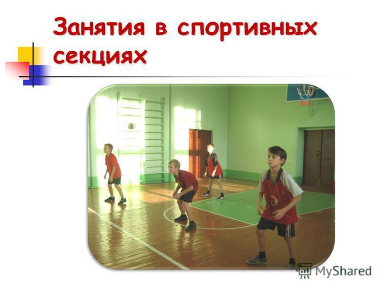 Занятия в спортивных секциях