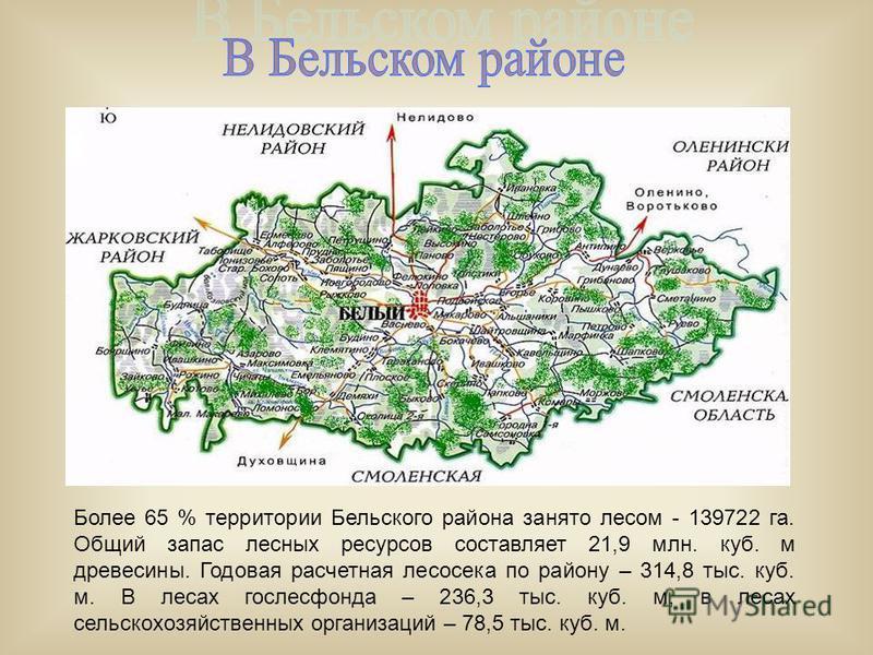Более 65 % территории Бельского района занято лесом - 139722 га. Общий запас лесных ресурсов составляет 21,9 млн. куб. м древесины. Годовая расчетная лесосека по району – 314,8 тыс. куб. м. В лесах гослесфонда – 236,3 тыс. куб. м, в лесах сельскохозя