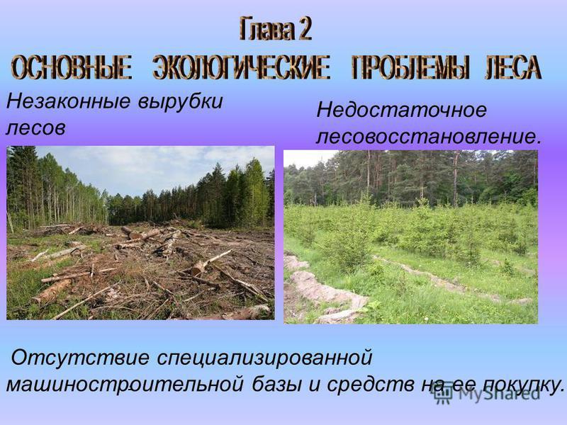 Незаконные вырубки лесов Недостаточное лесовосстановление. Отсутствие специализированной машиностроительной базы и средств на ее покупку..