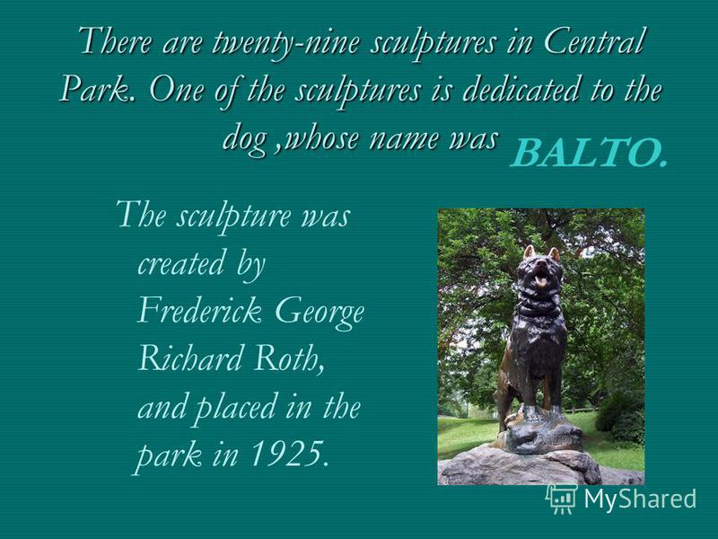 There are twenty-nine sculptures in Central Park. One of the sculptures is dedicated to the dog,whose name was The sculpture was created by Frederick George Richard Roth, and placed in the park in 1925. BALTO.