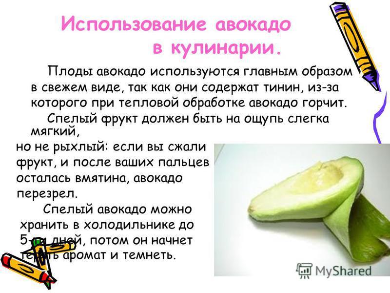 Использование авокадо в кулинарии. Плоды авокадо используются главным образом в свежем виде, так как они содержат тинин, из-за которого при тепловой обработке авокадо горчит. Спелый фрукт должен быть на ощупь слегка мягкий, но не рыхлый: если вы сжал