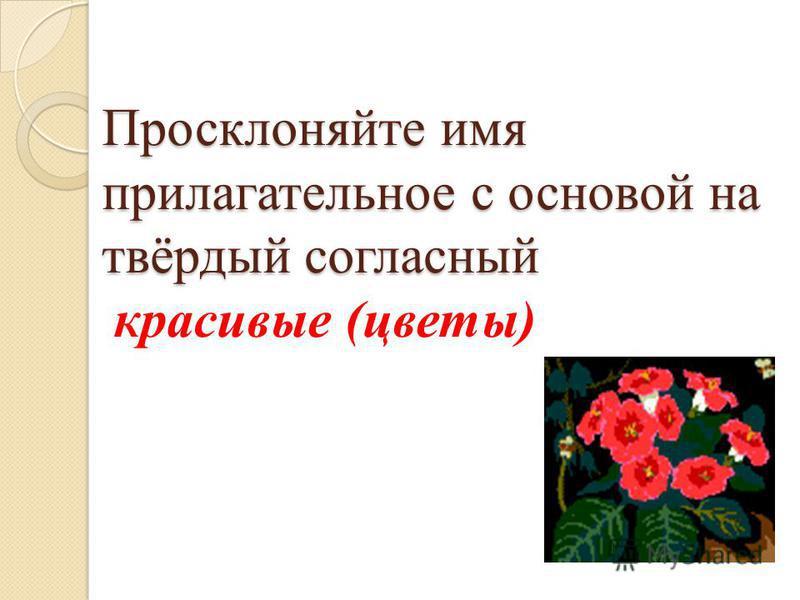 Просклоняйте имя прилагательное с основой на твёрдый согласный Просклоняйте имя прилагательное с основой на твёрдый согласный красивые (цветы)