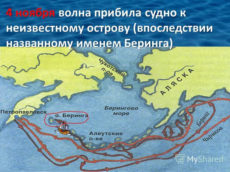 4 ноября волна прибила судно к неизвестному острову (впоследствии названному именем Беринга)