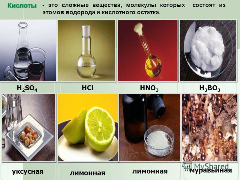 – это сложные вещества, состоящие из ионов металлов и связанных с ними гидроксид- ионов. Cu(OH) 2 NaOH