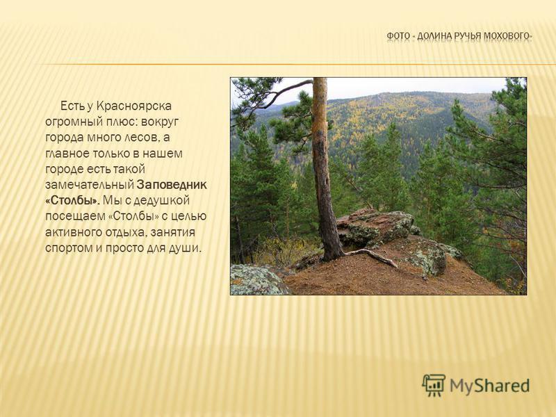 Есть у Красноярска огромный плюс: вокруг города много лесов, а главное только в нашем городе есть такой замечательный Заповедник «Столбы». Мы с дедушкой посещаем «Столбы» с целью активного отдыха, занятия спортом и просто для души.
