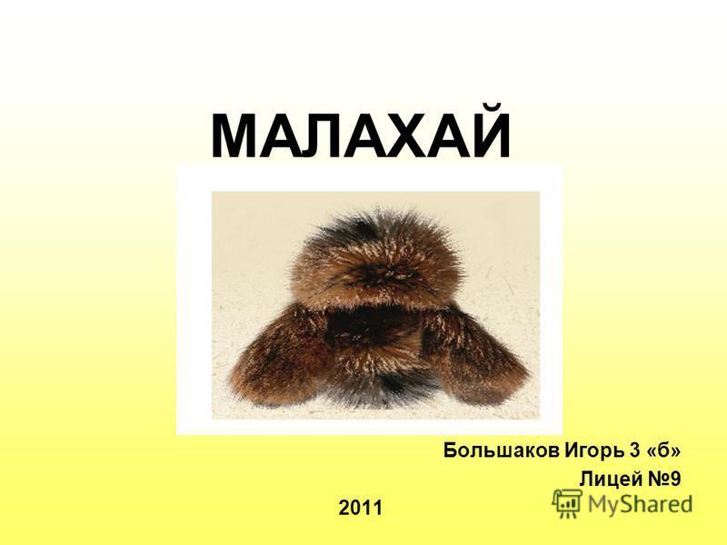 МАЛАХАЙ Большаков Игорь 3 «б» Лицей 9 2011