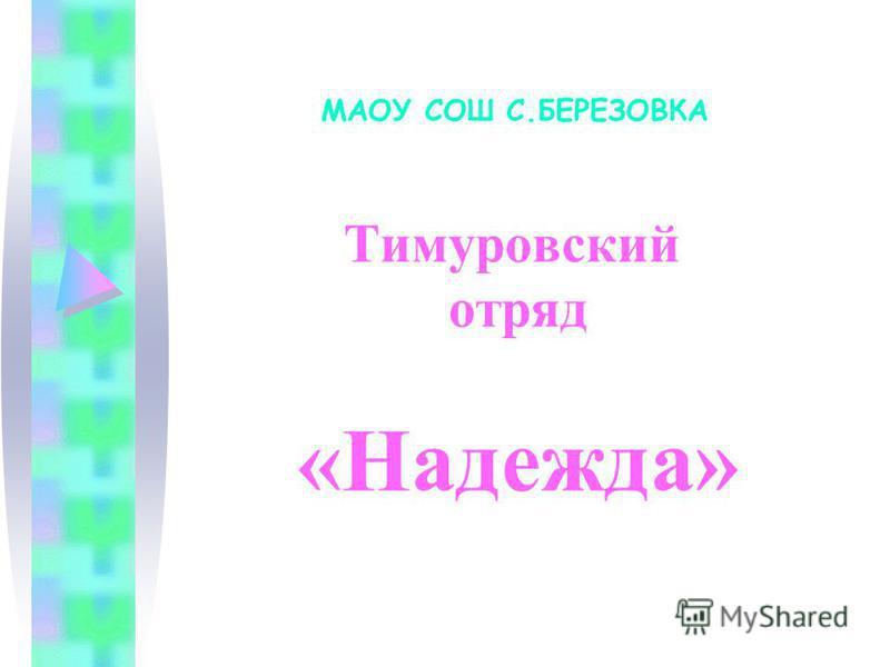 Тимуровский отряд «Надежда» МАОУ СОШ С.БЕРЕЗОВКА