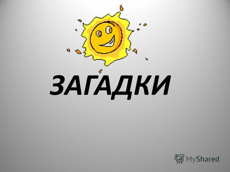 ЗАГАДКИ 18
