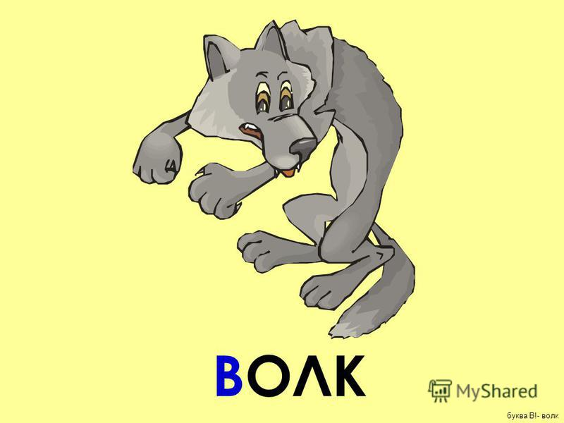 ВОЛК буква В!- волк