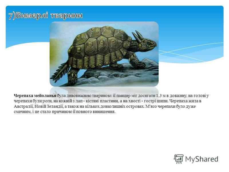 Черепаха мейоланья була дивовижною твариною: її панцир міг досягати 1,3 м в довжину, на голові у черепахи були роги, на кожній з лап - кістяні пластини, а на хвості - гострі шипи. Черепаха жила в Австралії, Новій Зеландії, а також на кількох довколиш