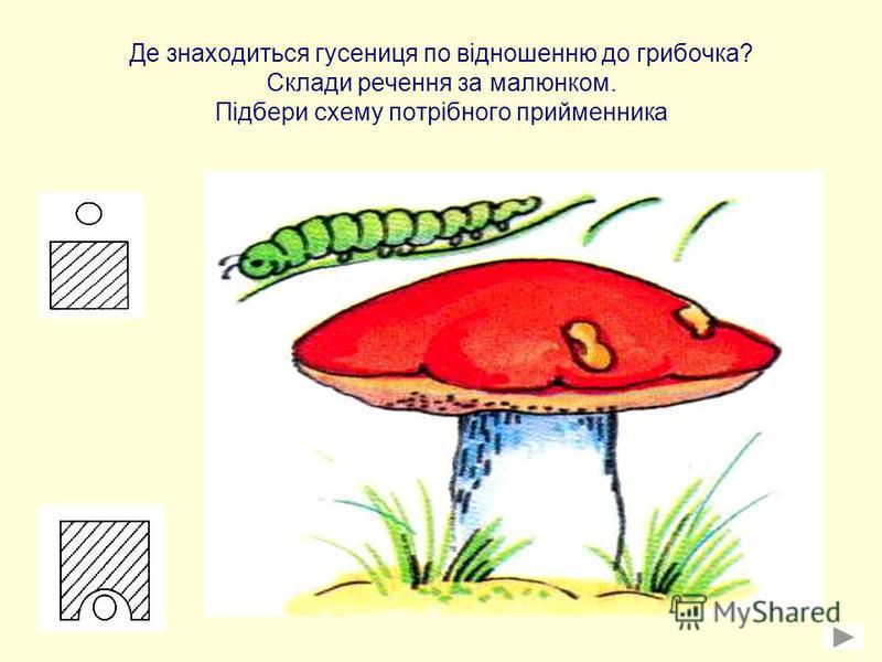 Де знаходиться гусениця по відношенню до грибочка? Склади речення за малюнком. Підбери схему потрібного прийменника