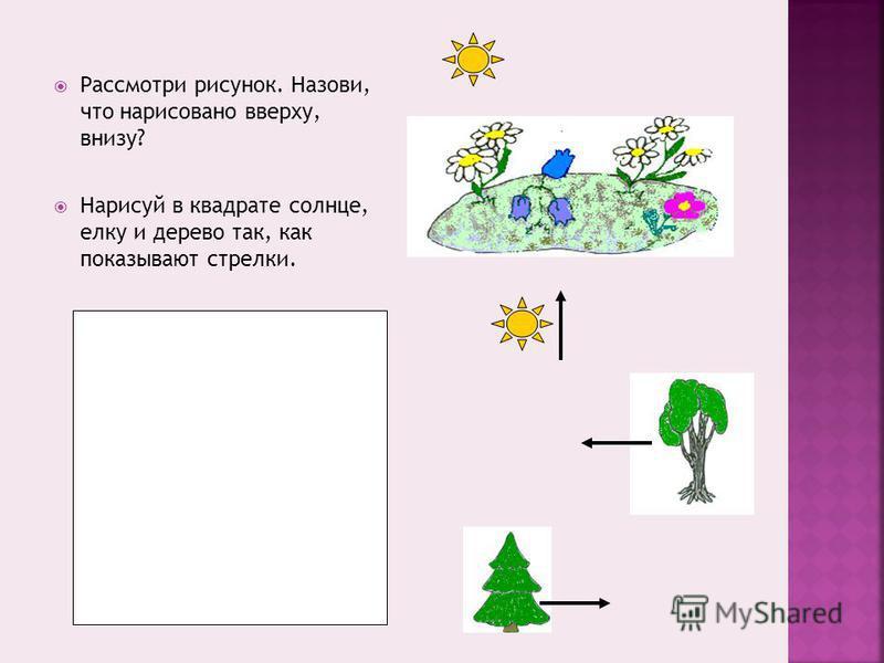 Рассмотри рисунок. Назови, что нарисовано вверху, внизу? Нарисуй в квадрате солнце, елку и дерево так, как показывают стрелки.