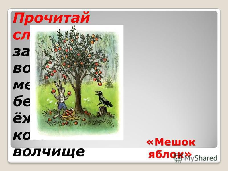 «Мешок яблок» Прочитай слова заяц ворона медведь бельчата ёжек коза волчище