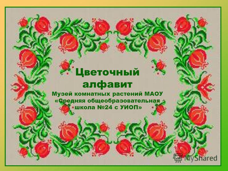 Цветочный алфавит Музей комнатных растений МАОУ «Средняя общеобразовательная школа 24 с УИОП»
