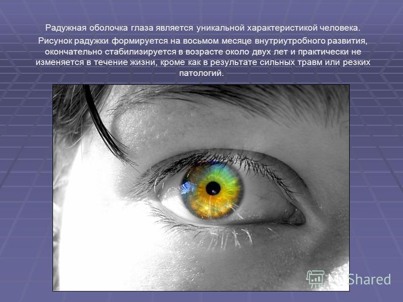 Радужная оболочка глаза является уникальной характеристикой человека. Рисунок радужки формируется на восьмом месяце внутриутробного развития, окончательно стабилизируется в возрасте около двух лет и практически не изменяется в течение жизни, кроме ка