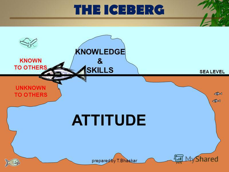 THE ICEBERG SEA LEVEL KNOWLEDGE & SKILLS ATTITUDE UNKNOWN TO OTHERS KNOWN TO OTHERS prepared by T.Bhaskar