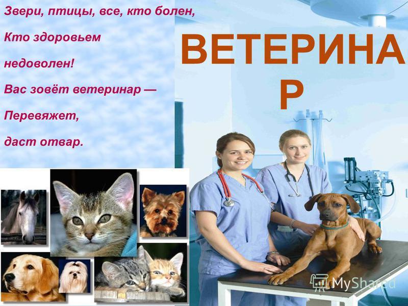 ВЕТЕРИНА Р Звери, птицы, все, кто болен, Кто здоровьем недоволен! Вас зовёт ветеринар Перевяжет, даст отвар.