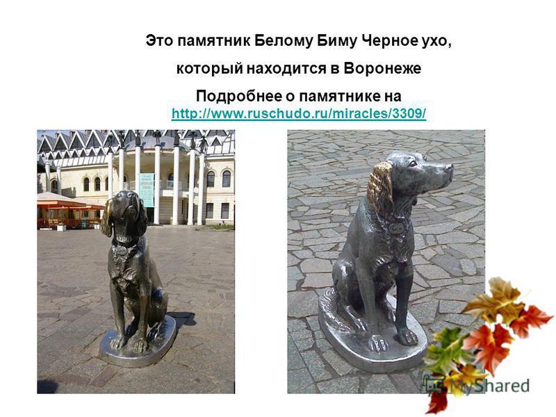 Это памятник Белому Биму Черное ухо, который находится в Воронеже Подробнее о памятнике на http://www.ruschudo.ru/miracles/3309/ http://www.ruschudo.ru/miracles/3309/