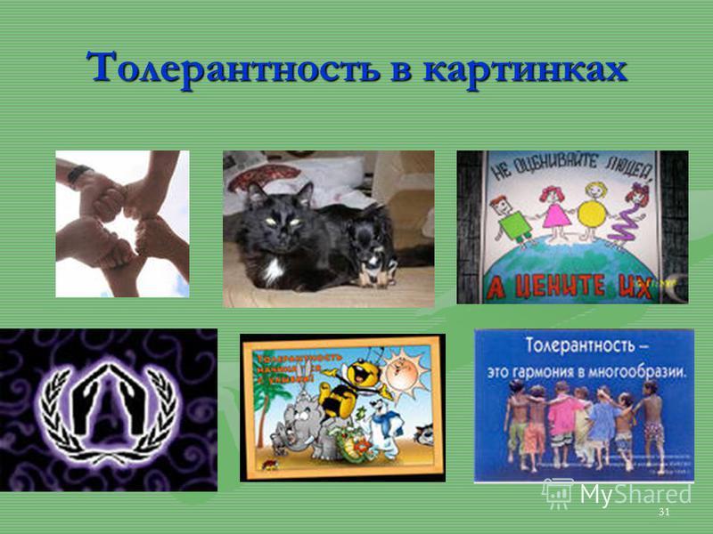 Толерантность в картинках 31