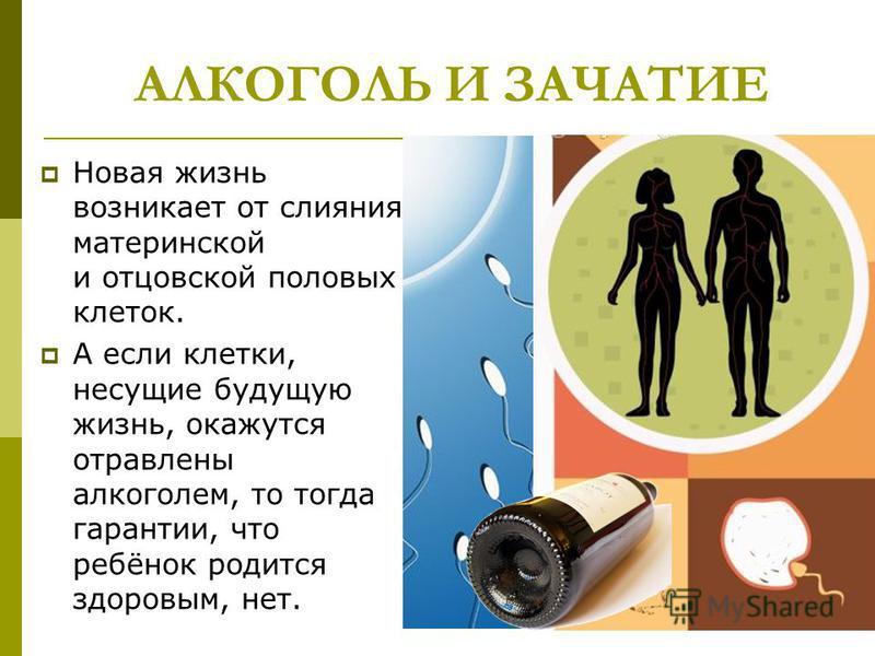 АЛКОГОЛЬ И ЗАЧАТИЕ Новая жизнь возникает от слияния материнской и отцовской половых клеток. А если клетки, несущие будущую жизнь, окажутся отравлены алкоголем, то тогда гарантии, что ребёнок родится здоровым, нет.