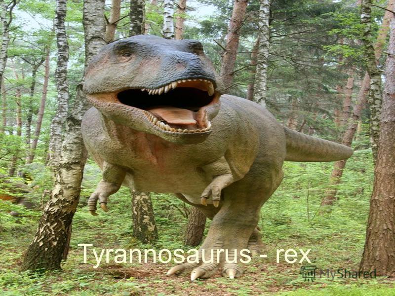 Tyrannosaurus - rex