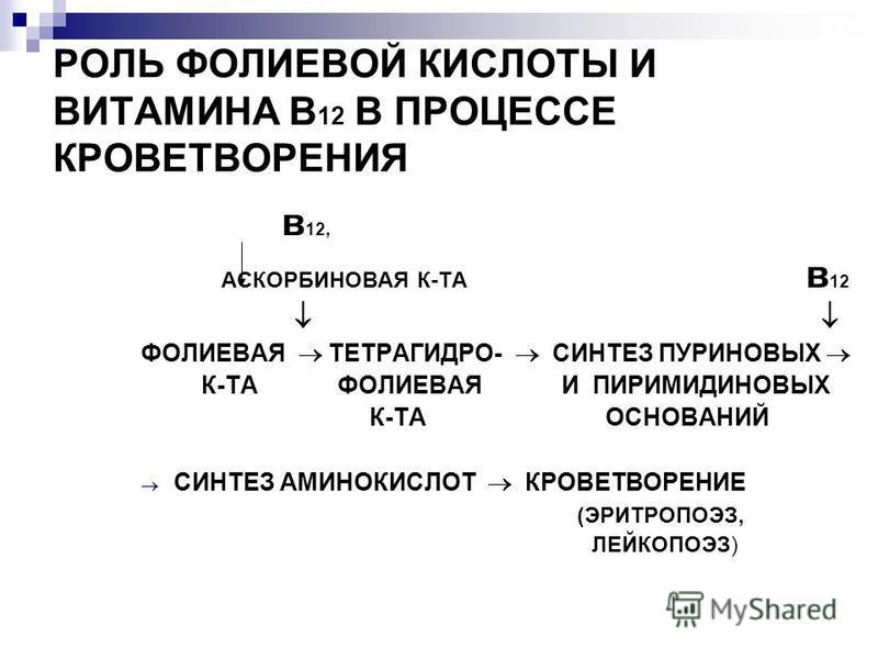 РОЛЬ ФОЛИЕВОЙ КИСЛОТЫ И ВИТАМИНА В 12 В ПРОЦЕССЕ КРОВЕТВОРЕНИЯ в 12, АСКОРБИНОВАЯ К-ТА в 12 ФОЛИЕВАЯ ТЕТРАГИДРО- СИНТЕЗ ПУРИНОВЫХ К-ТА ФОЛИЕВАЯ И ПИРИМИДИНОВЫХ К-ТА ОСНОВАНИЙ СИНТЕЗ АМИНОКИСЛОТ КРОВЕТВОРЕНИЕ (ЭРИТРОПОЭЗ, ЛЕЙКОПОЭЗ)