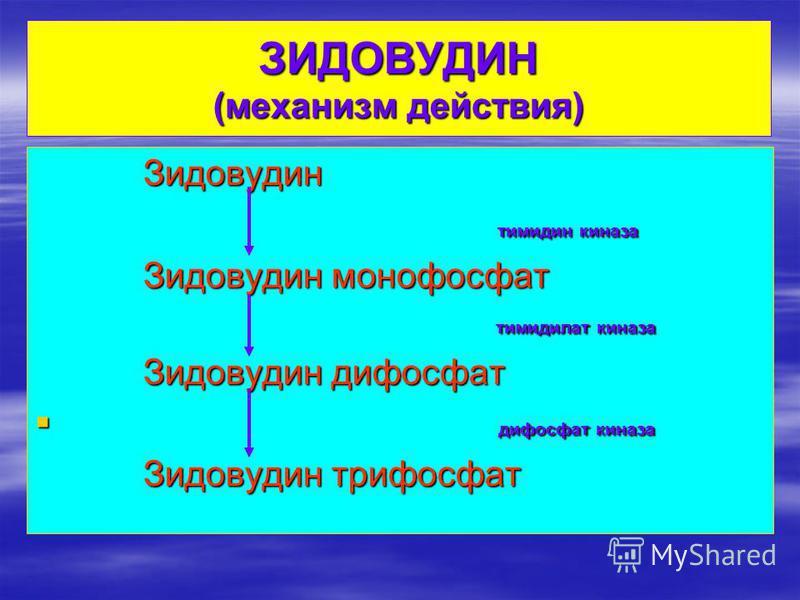 ЗИДОВУДИН (механизм действия) Зидовудин Зидовудин тимидин киназа тимидин киназа Зидовудин монофосфат Зидовудин монофосфат тимидилат киназа тимидилат киназа Зидовудин дифосфат Зидовудин дифосфат дифосфат киназа дифосфат киназа Зидовудин трифосфат Зидо