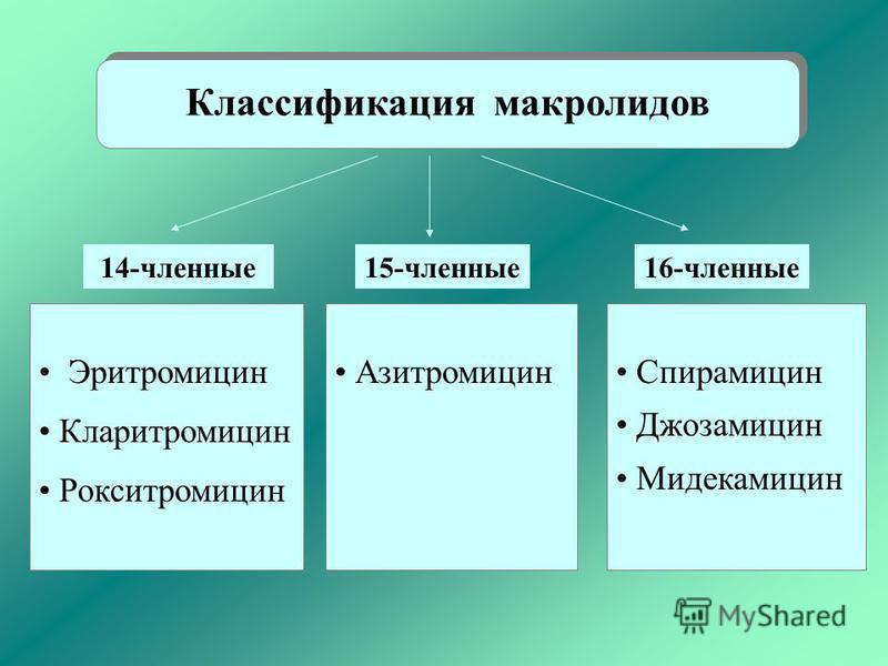 Классификация макролидов Эритромицин Кларитромицин Рокситромицин Азитромицин Спирамицин Джозамицин Мидекамицин 14-членные 15-членные 16-членные