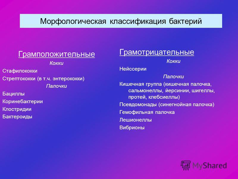 Морфологическая классификация бактерий Грамположительные Кокки Стафилококки Стрептококки (в т.ч. энтерококки) Палочки Бациллы Коринебактерии Клостридии Бактероиды Грамотрицательные Кокки Нейссерии Палочки Кишечная группа (кишечная палочка, сальмонелл