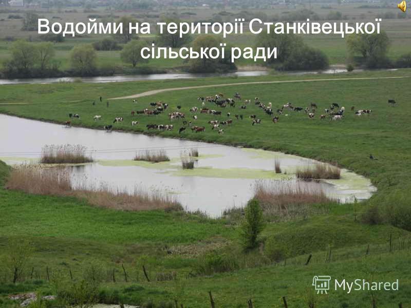 Водойми на території Станківецької сільської ради