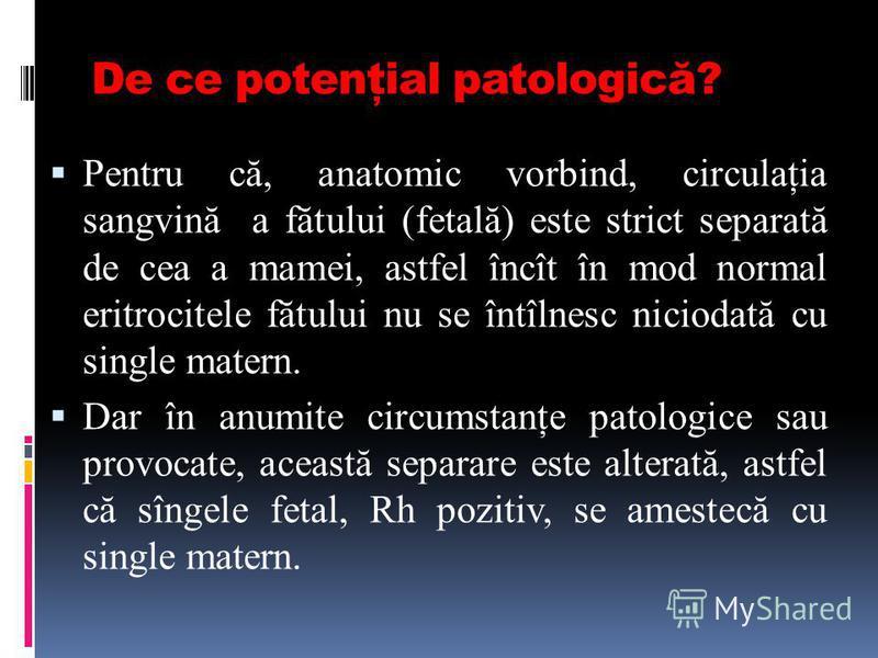De ce potenţial patologică? Pentru că, anatomic vorbind, circulaţia sangvină a fătului (fetală) este strict separată de cea a mamei, astfel încît în mod normal eritrocitele fătului nu se întîlnesc niciodată cu single matern. Dar în anumite circumstan