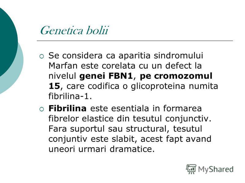 Genetica bolii Se considera ca aparitia sindromului Marfan este corelata cu un defect la nivelul genei FBN1, pe cromozomul 15, care codifica o glicoproteina numita fibrilina-1. Fibrilina este esentiala in formarea fibrelor elastice din tesutul conjun