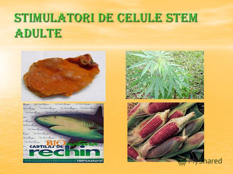 Stimulatori de celule stem adulte