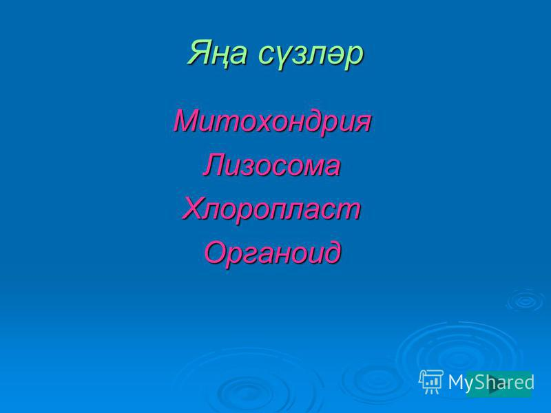 Яңа сүзләр МитохондрияЛизосомаХлоропластОрганоид