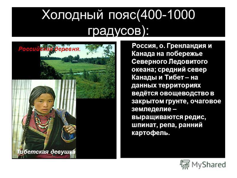 Холодный пояс(400-1000 градусов): Российская деревня. Россия, о. Гренландия и Канада на побережье Северного Ледовитого океана; средний север Канады и Тибет – на данных территориях ведётся овощеводство в закрытом грунте, очаговое земледелие – выращива